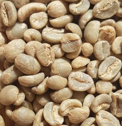 Rohkaffee 1 x 4 Kg Kenia Nyeri Projektkaffee