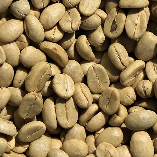 Cafe Creme nach Schweizer Art Bio und Fairtrade 4 Kg Rohkaffee