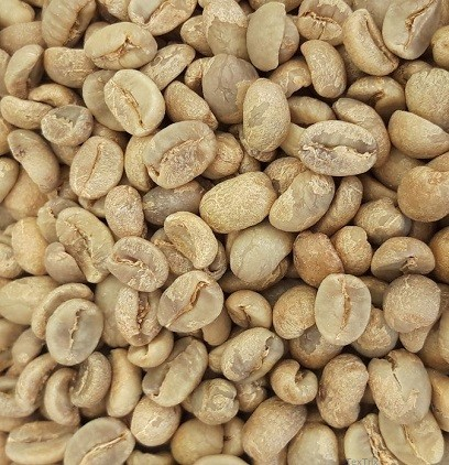 Nicaragua BIO & Fair-Trade1 x 4 Kg Rohkaffee