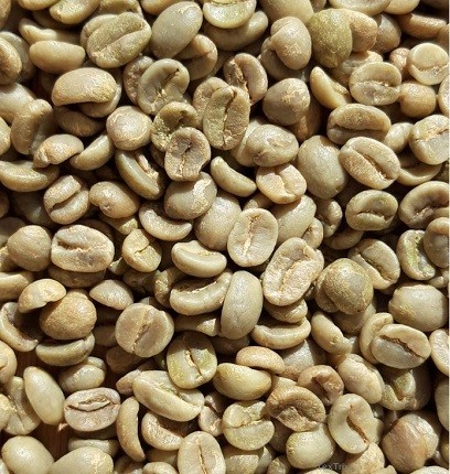 Rohkaffee 1 x 4 Kg Santa Maria de Costa Rica Tarazzu