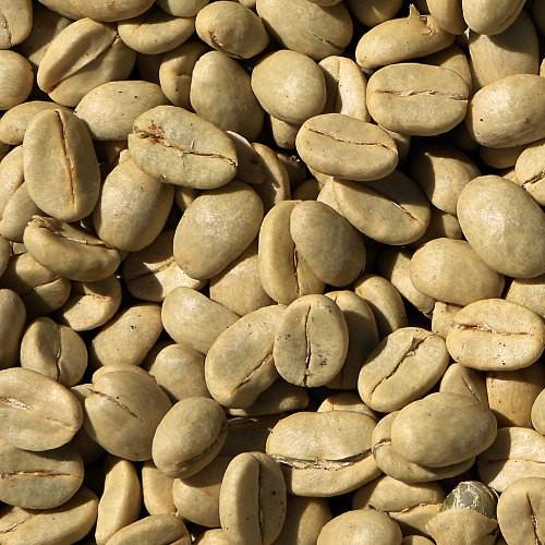 Rohkaffee Nicaragua BIO & Fair-Trade 1 x 4 Kg