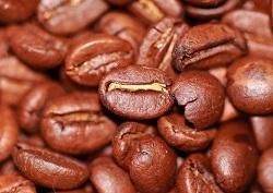 Frisch-gerostete-Kaffeebohnen
