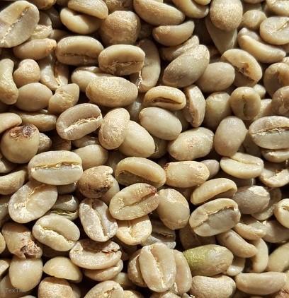 Rohkaffee 1 x 4 Kg Etiopian Yirgacheffe