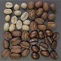 Kaffeebohnen-verschiedene-Roststufen