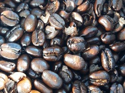 Nicaragua-Bohnen-dunkel-geroestet