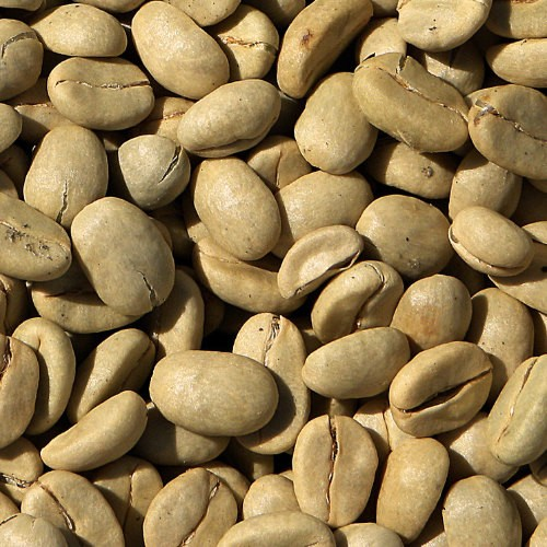 Rohkaffee El Salvador 1 x 4 Kg